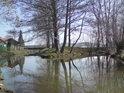 Soutok Olešnického potoka s Albou v Česticích