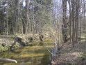Alba přitéká od Dlouhé Louky k Týništi nad Orlicí