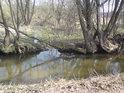 Odtud se zásobuje vodou malý mokřad na pravém břehu Alby