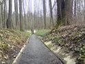 Počátek strouhy, napájející rybníky pod Týništěm nad Orlicí